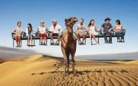 camel 10