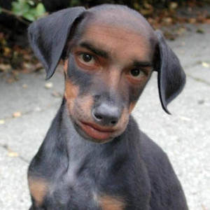 man dog 2