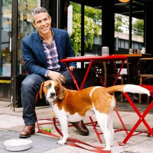 andy cohen dog