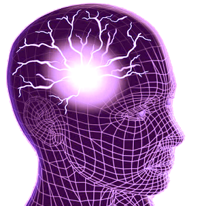 brain 4