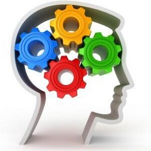 man brain 2