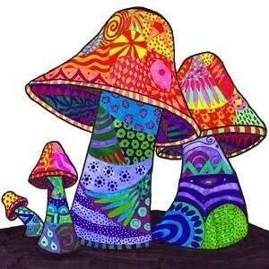 mushrooms trip-1