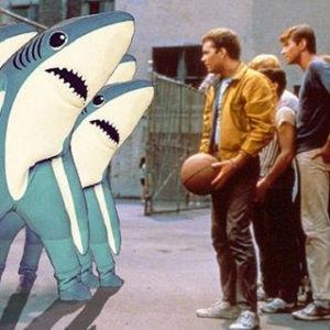 jets versus sharks