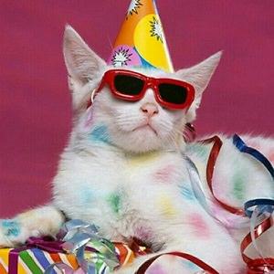 cat-party
